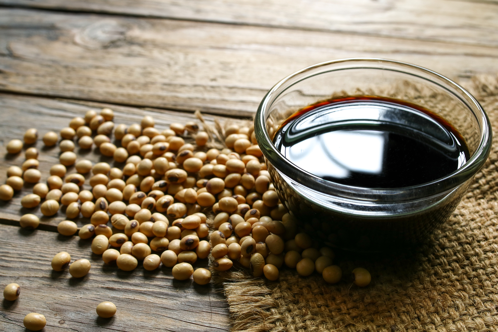 Alimentazione e tumori: la soia