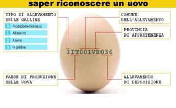 saper riconoscere un uovo