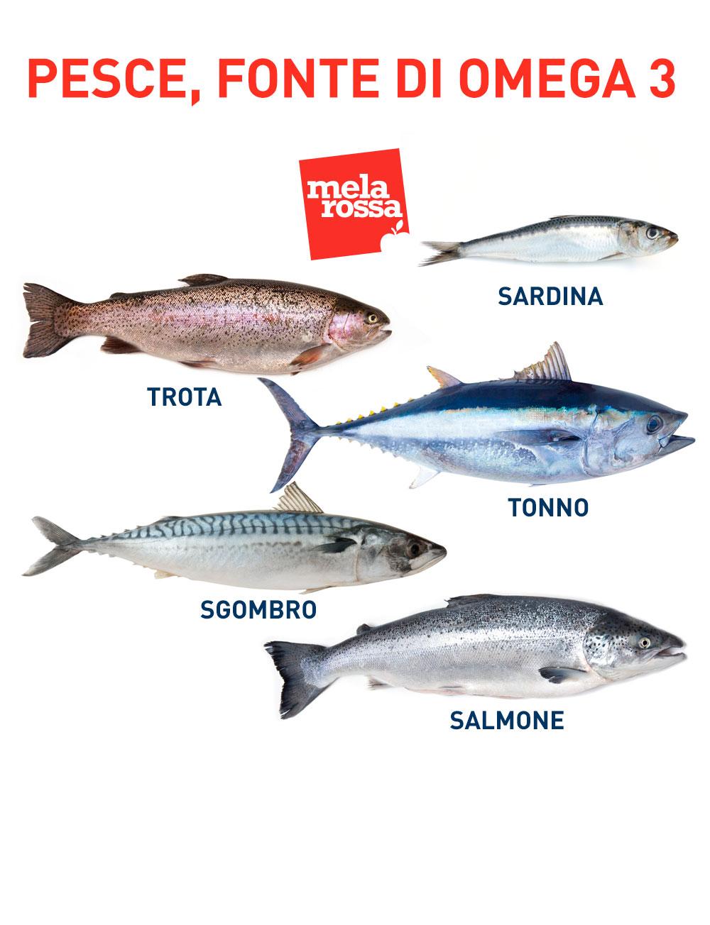 Consuma ogni settimana del pesce, fonte di omega 3
