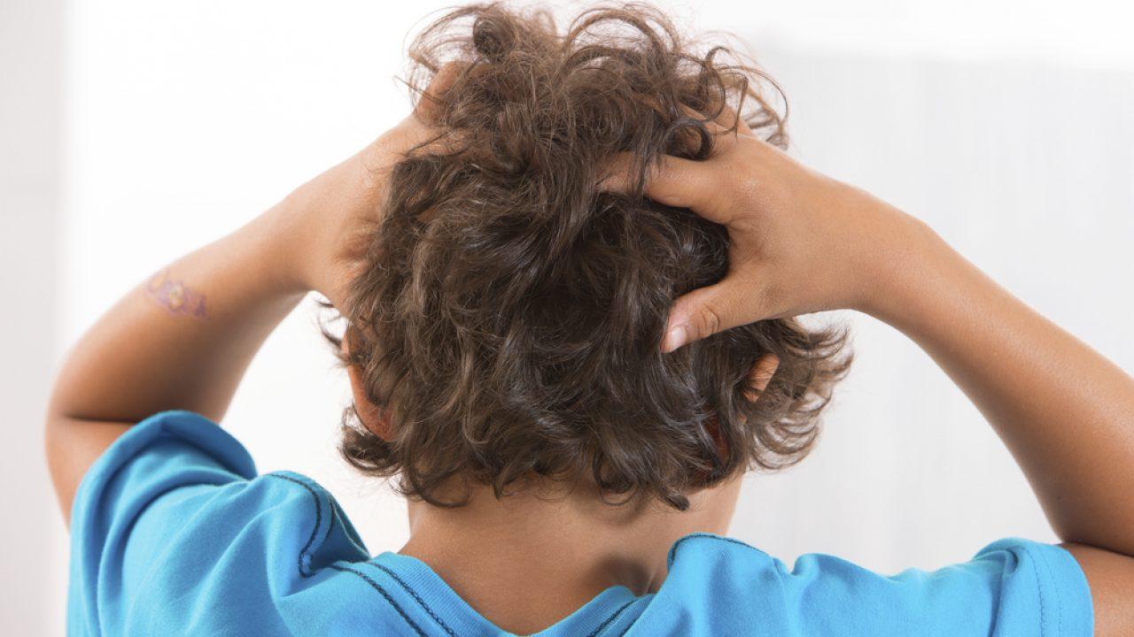Pidocchi Ecco Come Eliminarli Prevenzione E Rimedi Melarossa