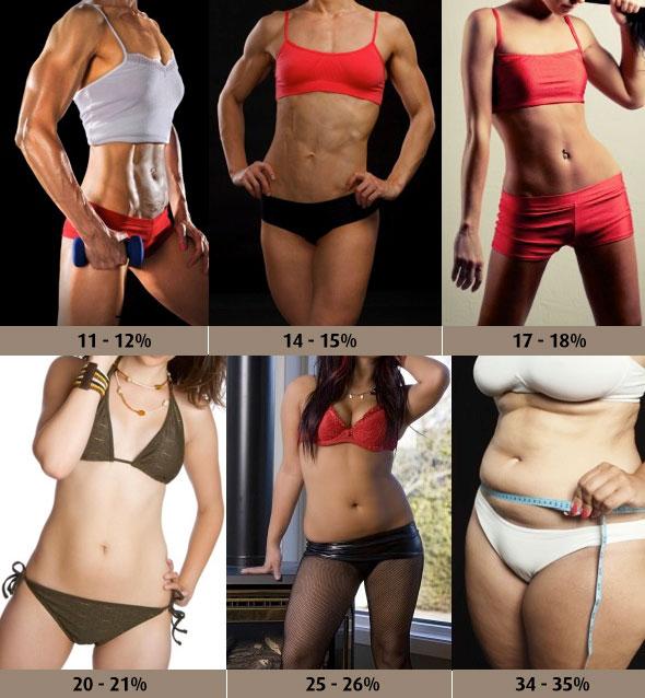 Massa grassa: tabella grasso corporeo donne