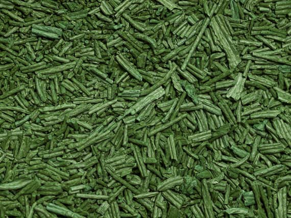 Spirulina. Alghe, alimenti ricchi di salute