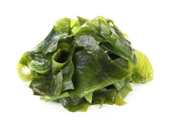 Wakame. Alghe, alimenti ricchi di salute