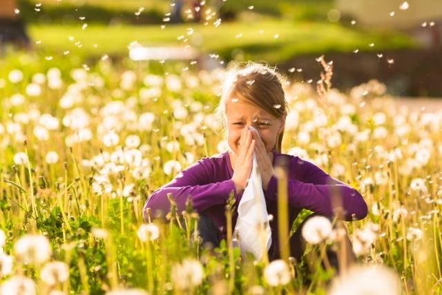 Allergia al polline come non soffrire ?