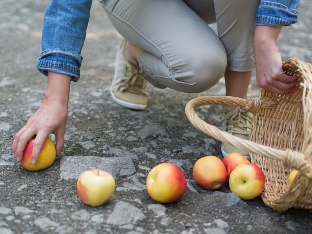 frutta di stagione, aprile