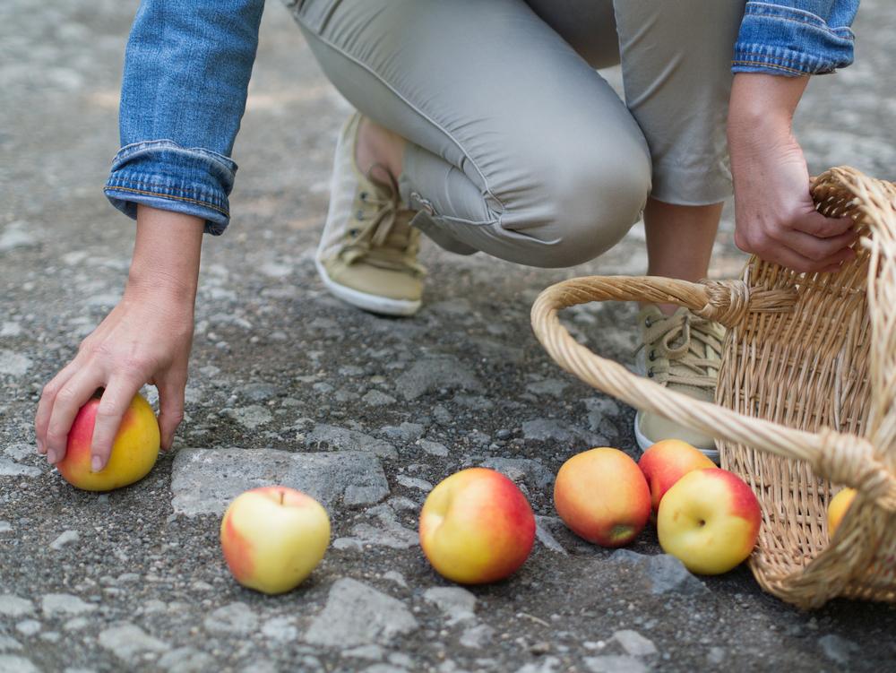 frutta di Aprile