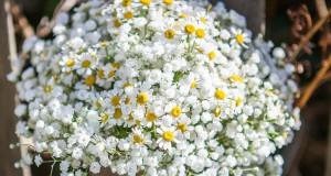 la scelta del bouquet giusto per una sposa