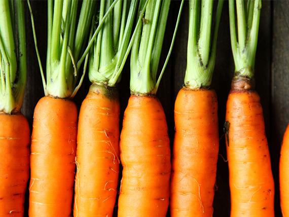Radici da mangiare un aiuto per sentirti sazio a dieta for Radici commestibili