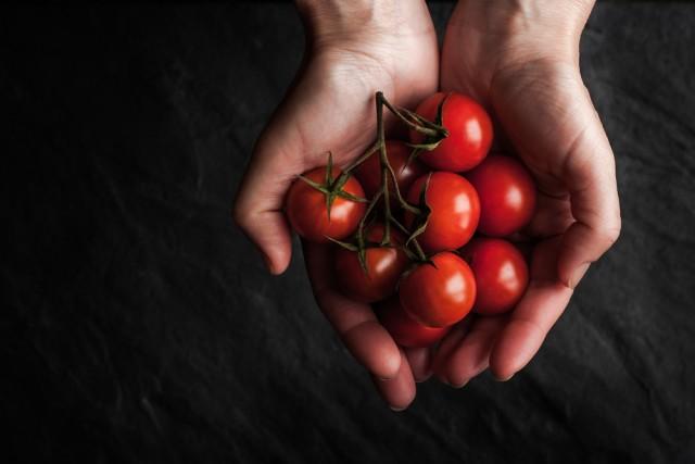 come coltivare i pomodori in casa