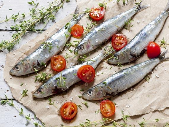 seno-perfetto-sardine