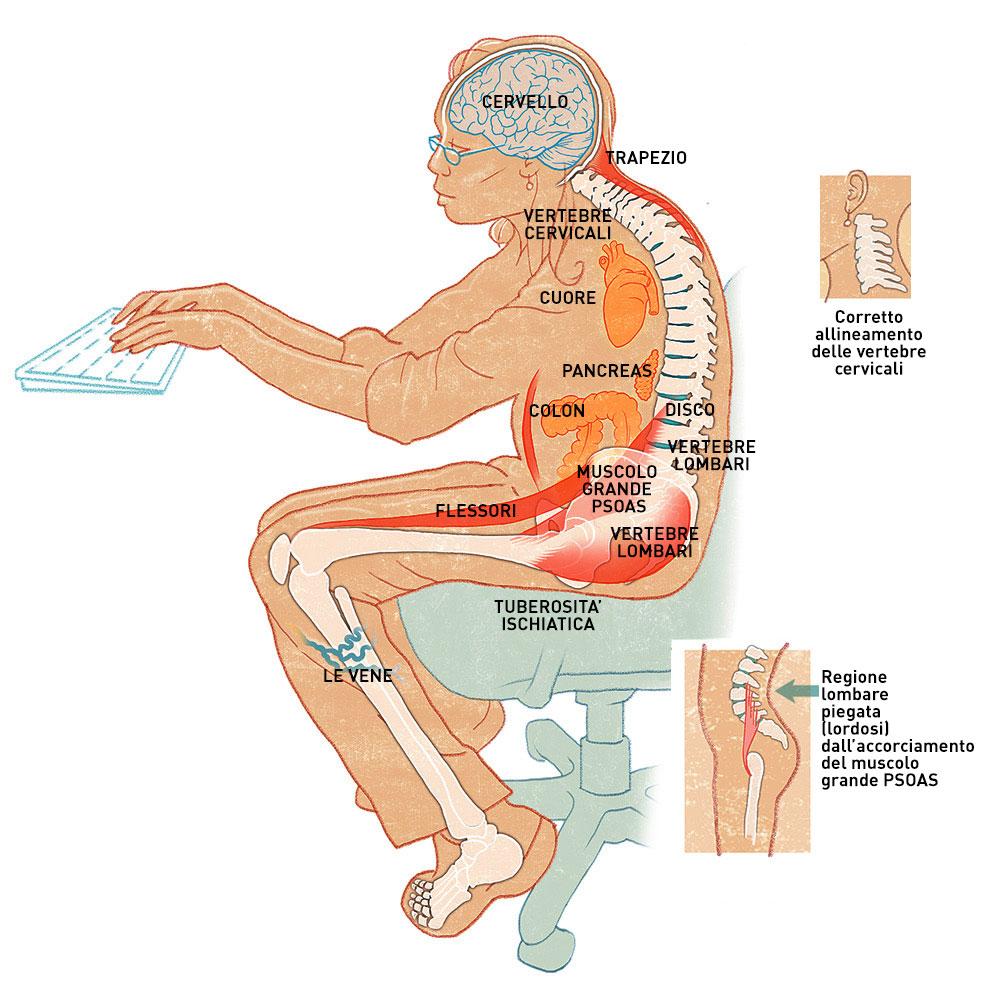 segui i consigli per come evitare di star male con la schiena stando sempre seduti