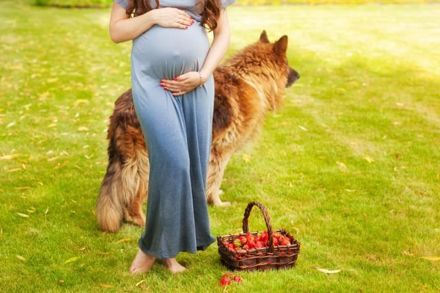 gravidanza passeggia col cane per essere in forma