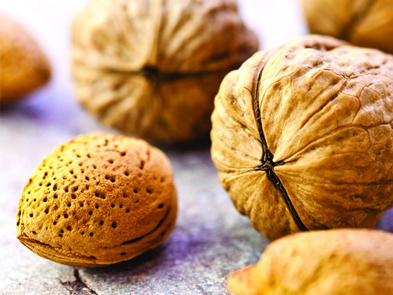i cibi che aiutano a combattere il colesterolo noci e mandorle