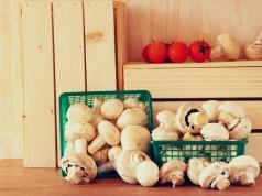 benefici dei funghi