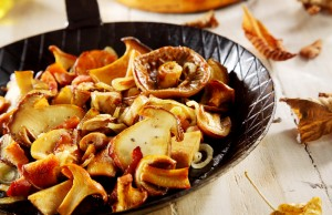 consigli per mangiare funghi in sicurezza