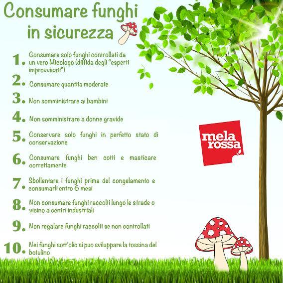 consigli per consumare i funghi in sicurezza