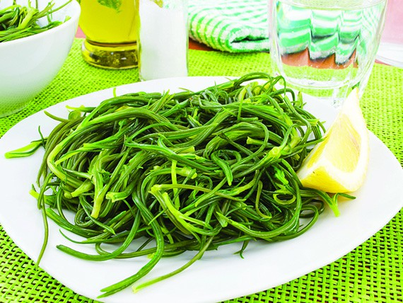 la verdura di aprile sana e nutriente e gustosa