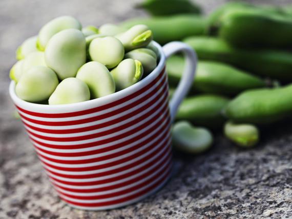 i benefici delle fave