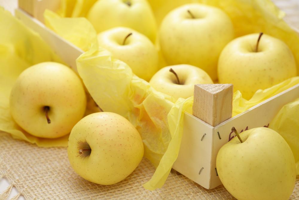 Guida all'acquisto e alla conservazione delle mele