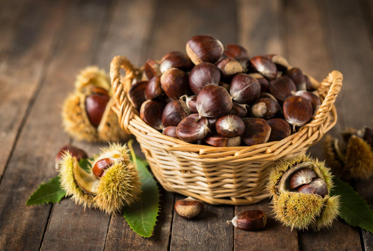 frutta di novembre, le castagne