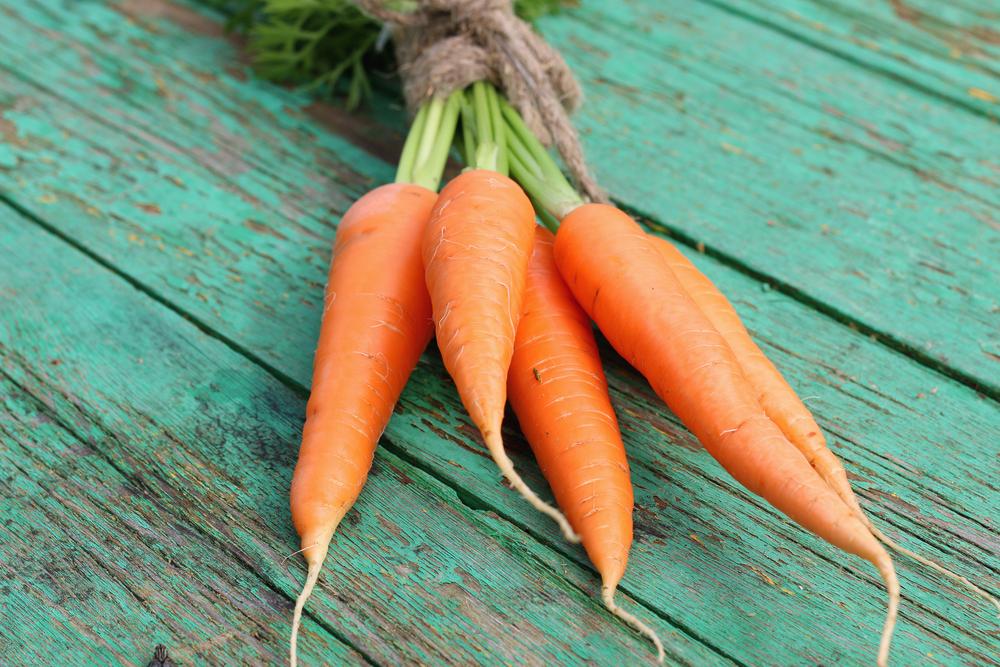 le carote alimenti ricchi di fibre