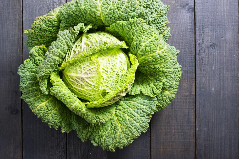il cavolo verza alimenti ricchi di fibre