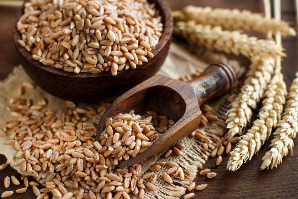 il farro alimenti ricchi di fibre