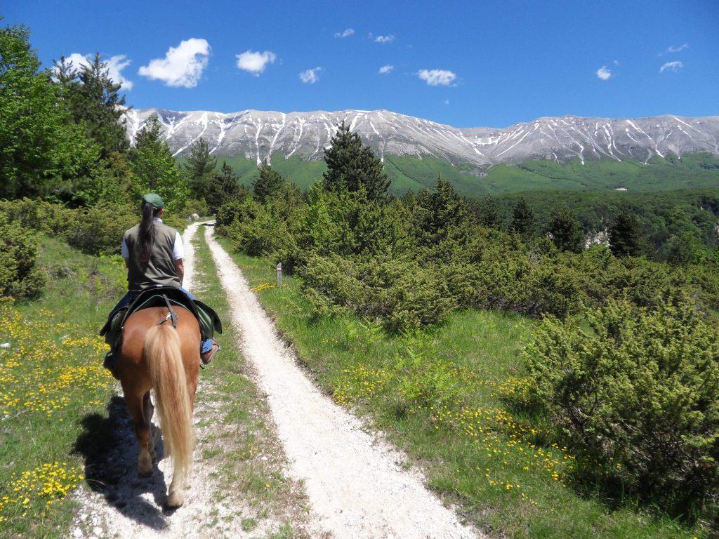 Sport all'aria aperta: equitazione in Abruzzo