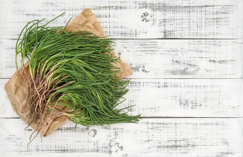 agretti: proprietà, benefici ed utilizzo in cucina
