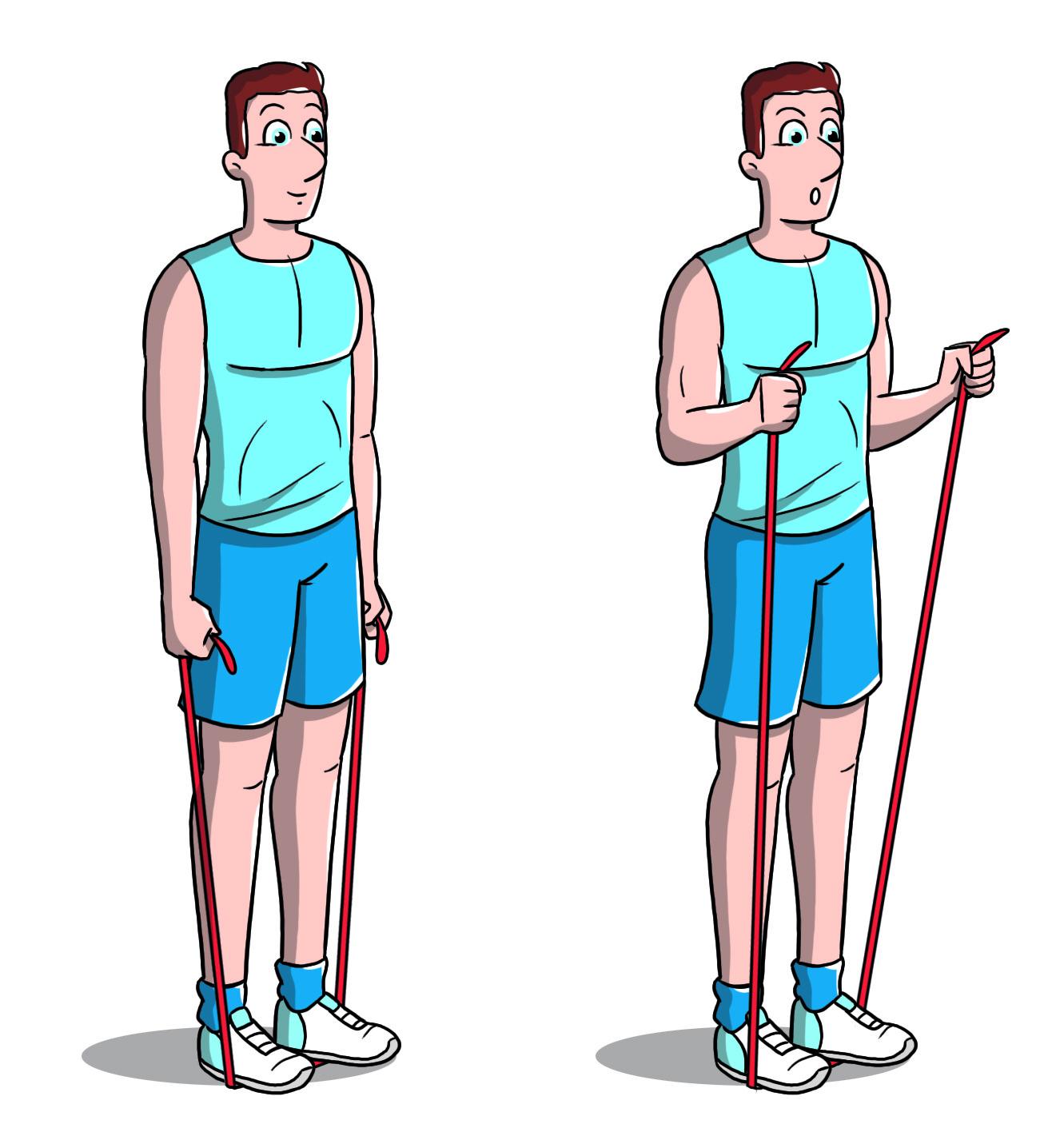 workout a casa: bicipiti