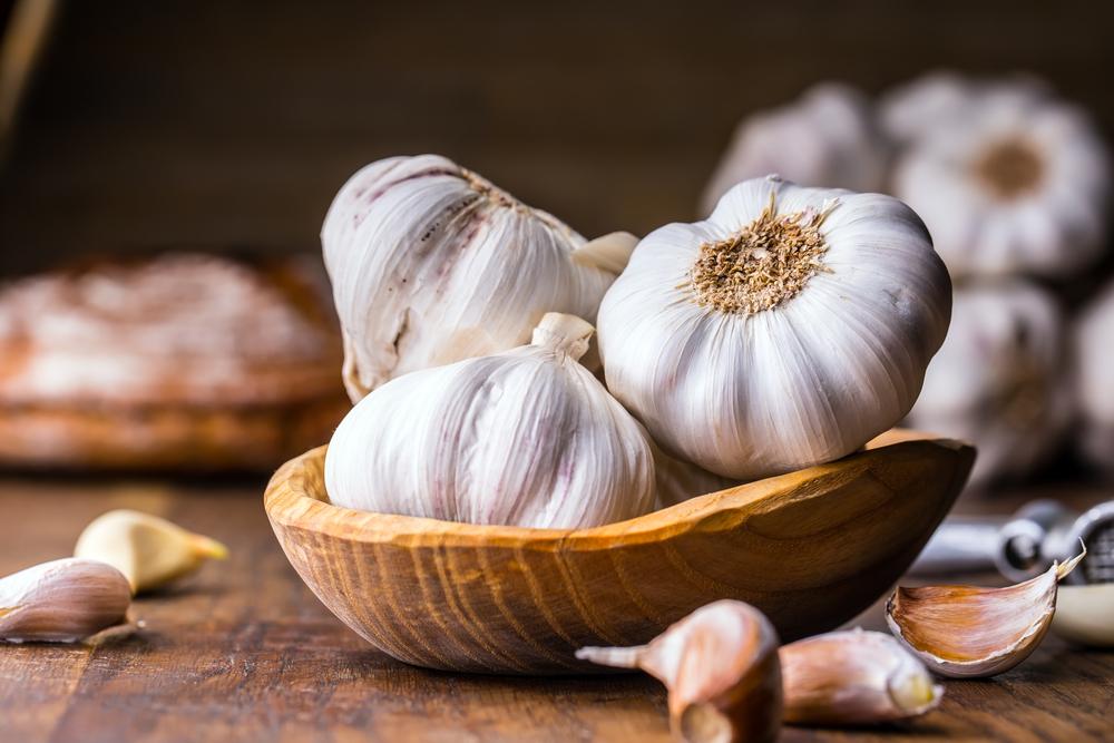 rimedi contro le zanzare, l'aglio