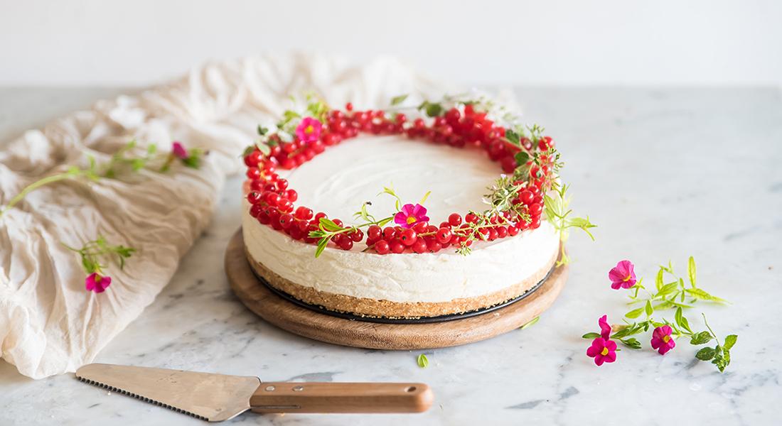 Torte di compleanno: ricette veloci, la cheesecake light