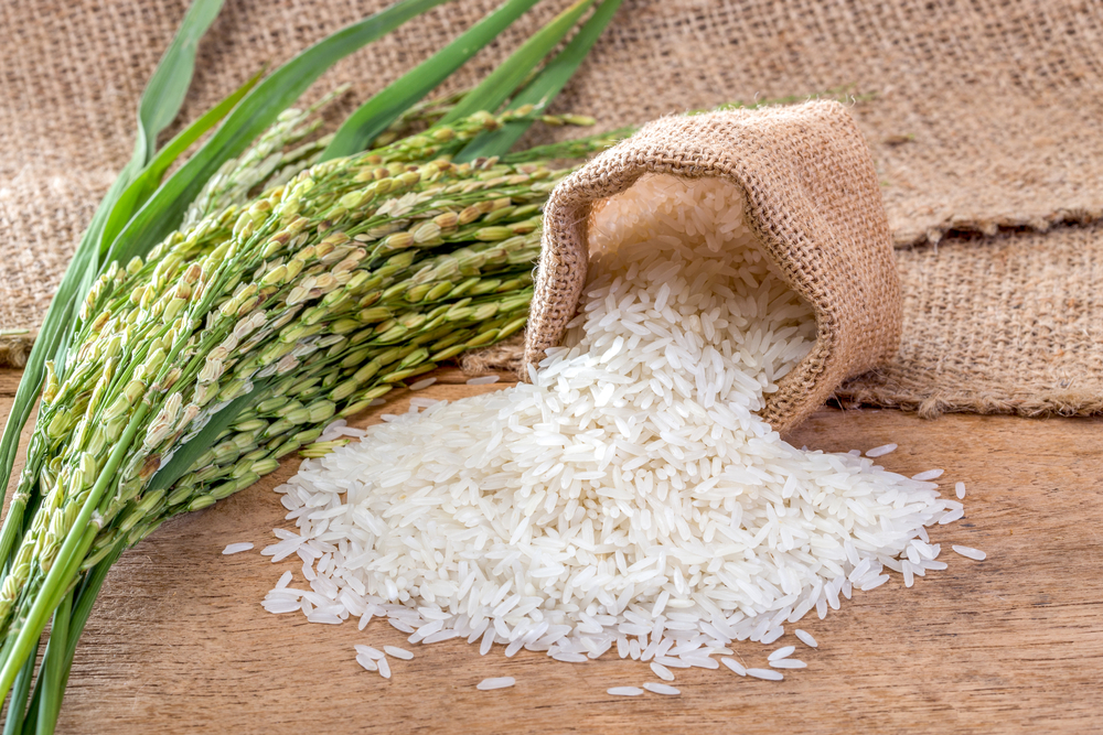 Cibi economici per la dieta: il riso