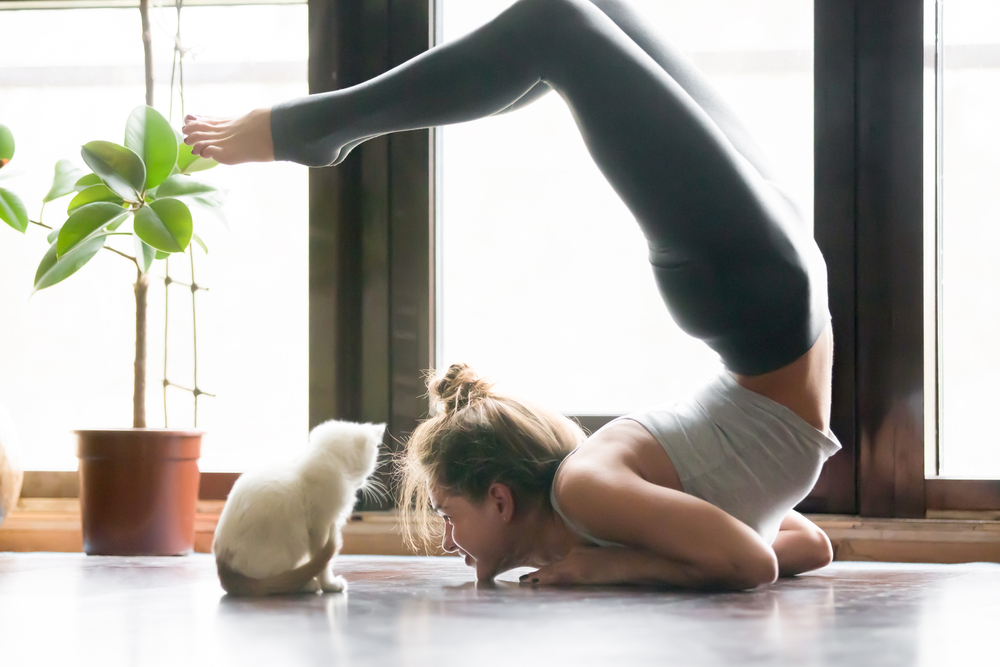 posizioni yoga per principianti per iniziare a praticare
