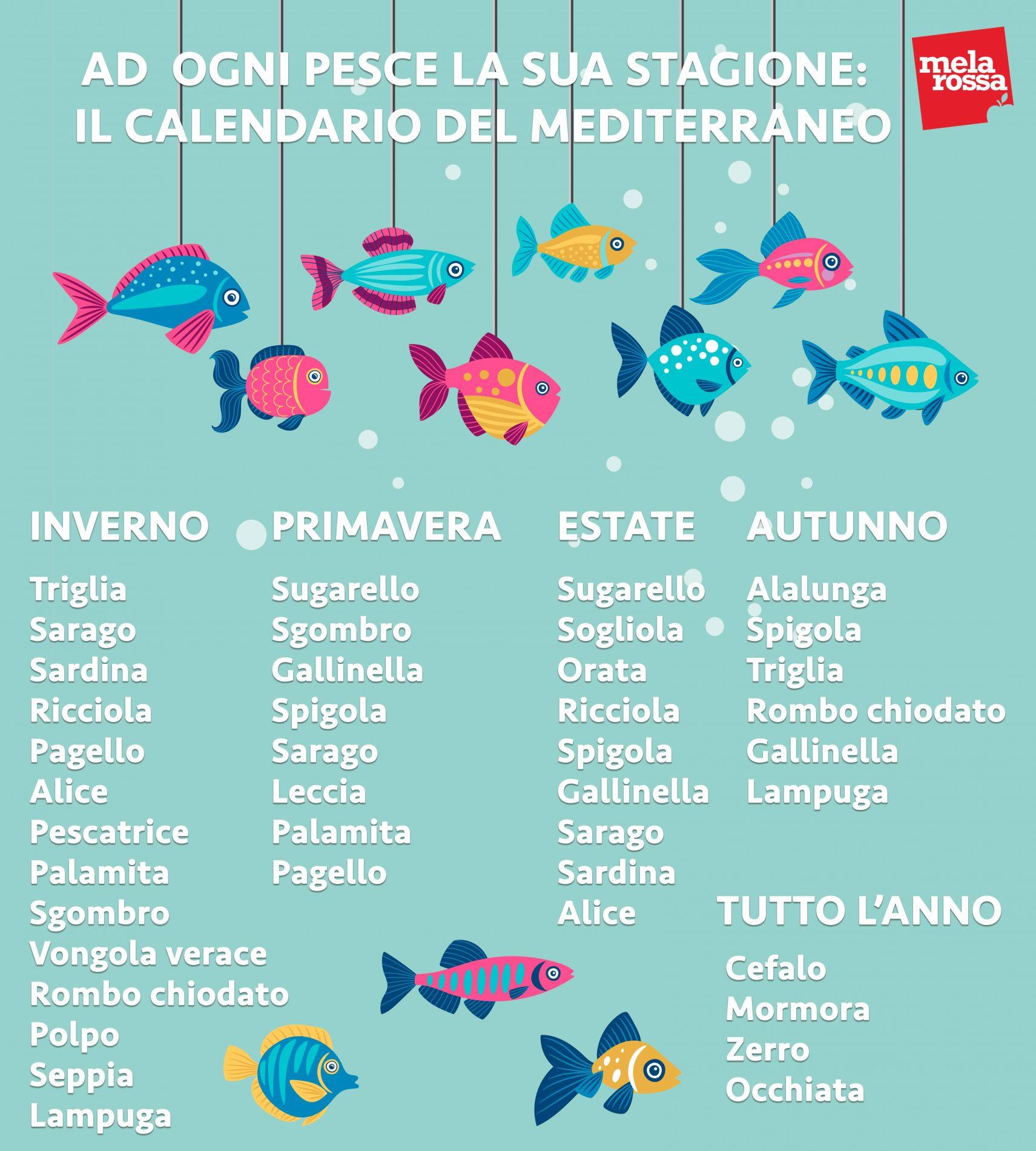guida acquisto pesce: i pesci da comprare