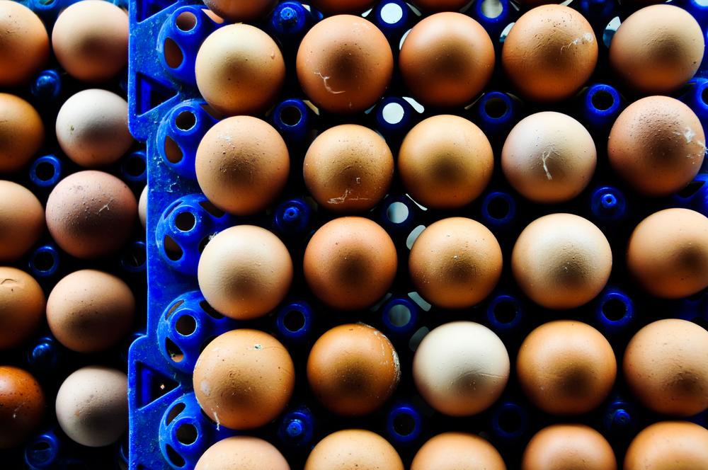 Uova contaminate: la nutrizionista ti spiega i rischi per la salute