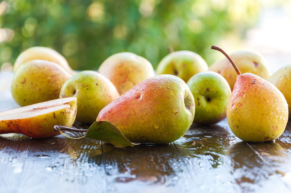 Frutta di settembre - pere