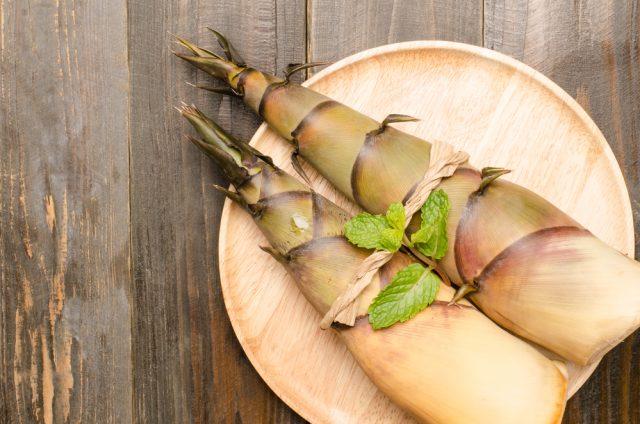 germogli di bamb in cucina propriet e benefici melarossa