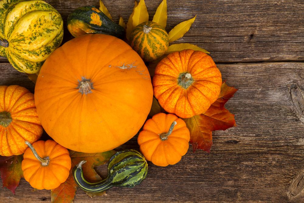 frutta e verdura di stagione: zucca