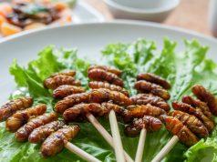 insetti da mangiare: dal 2018 sulla tua tavola
