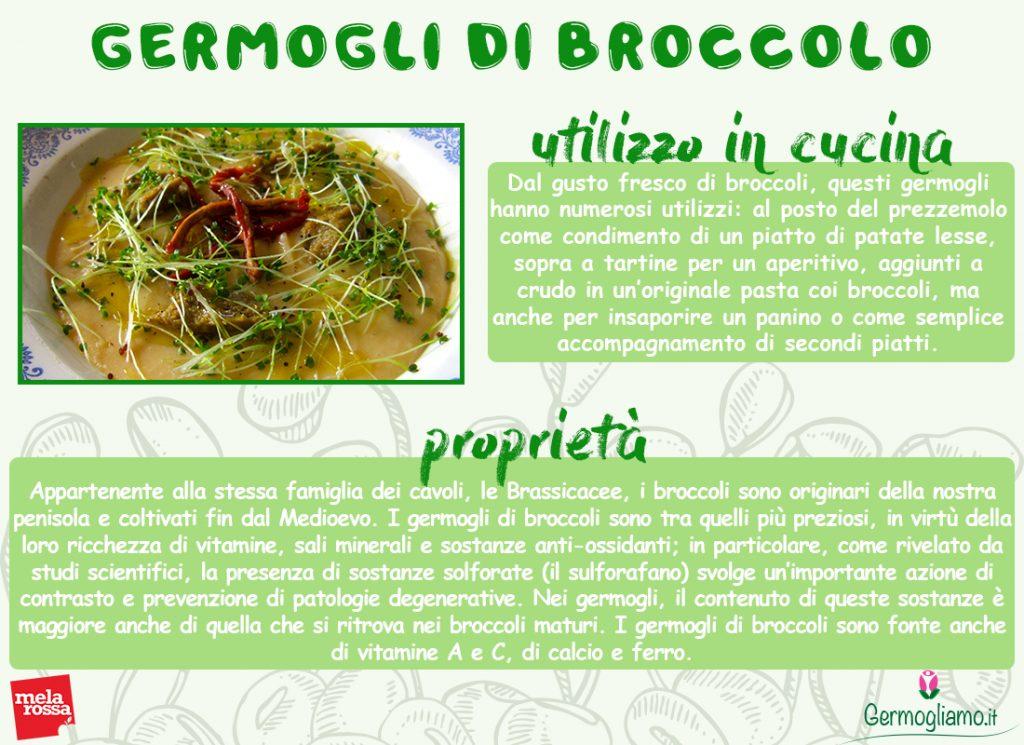 proprietà dei germogli di broccolo