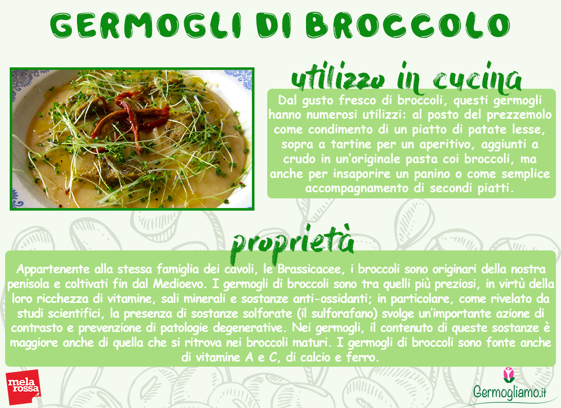 germogli di broccolo proprietà