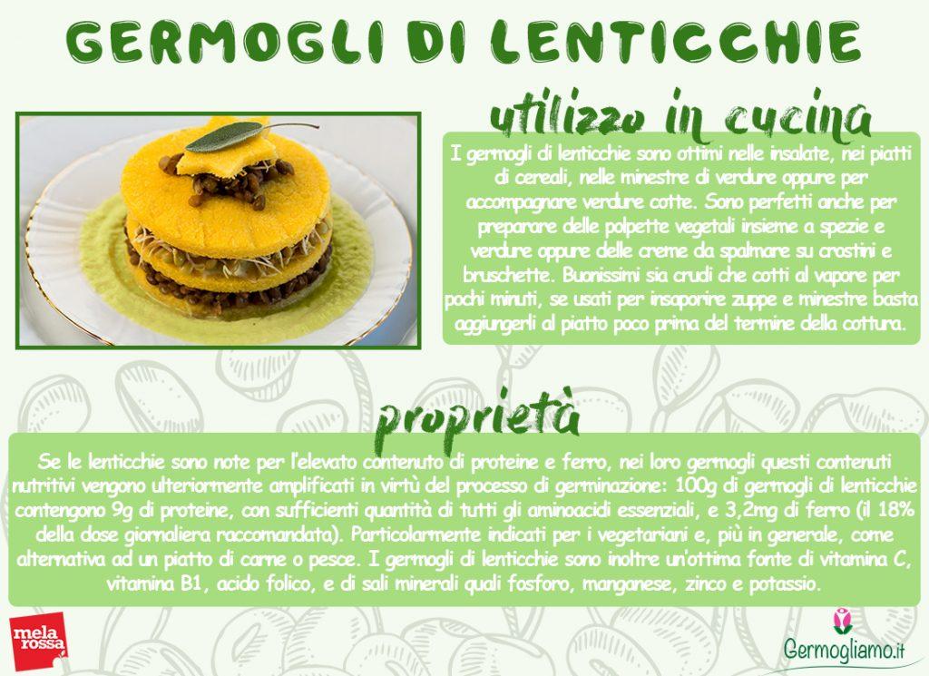 proprietà dei germogli di lenticchie