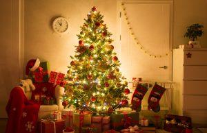 albero di Natale: consigli e perché sceglierne un vero