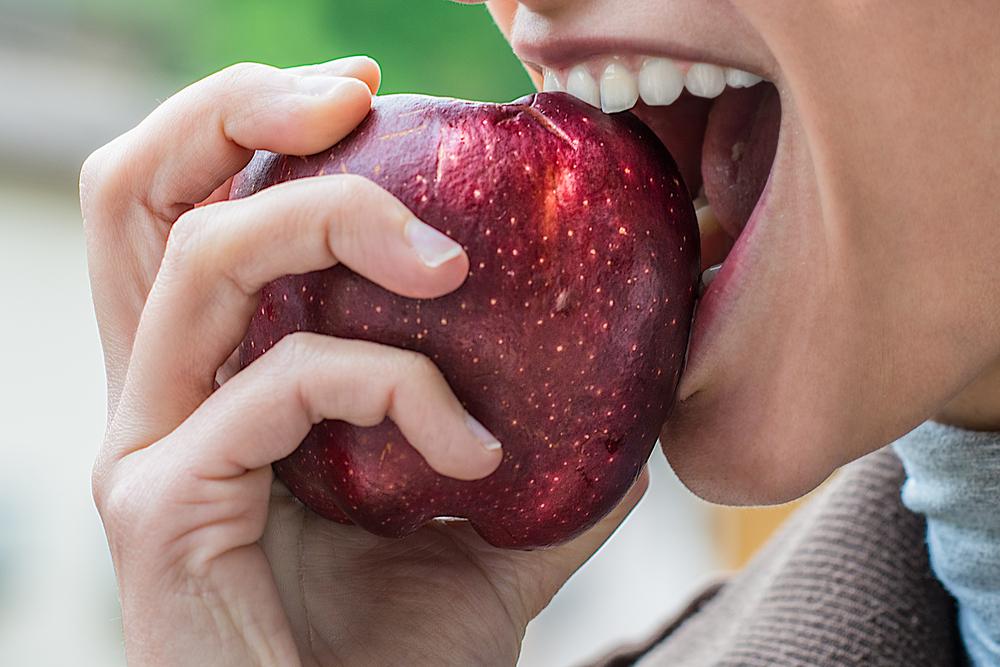 evviva le fibre nella dieta
