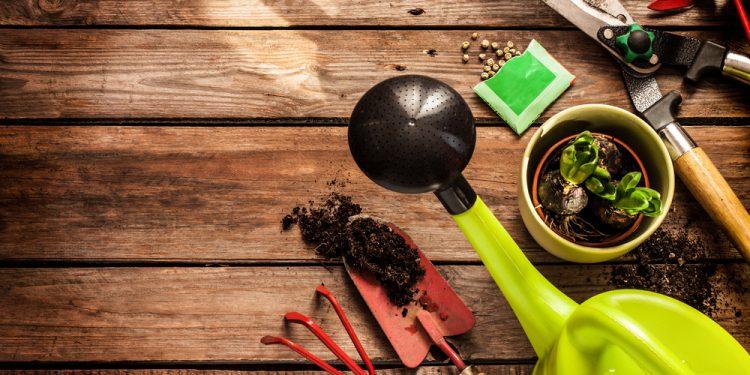 come creare un orto a casa