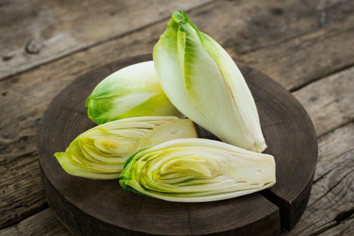 tipi di insalata, indivia belga