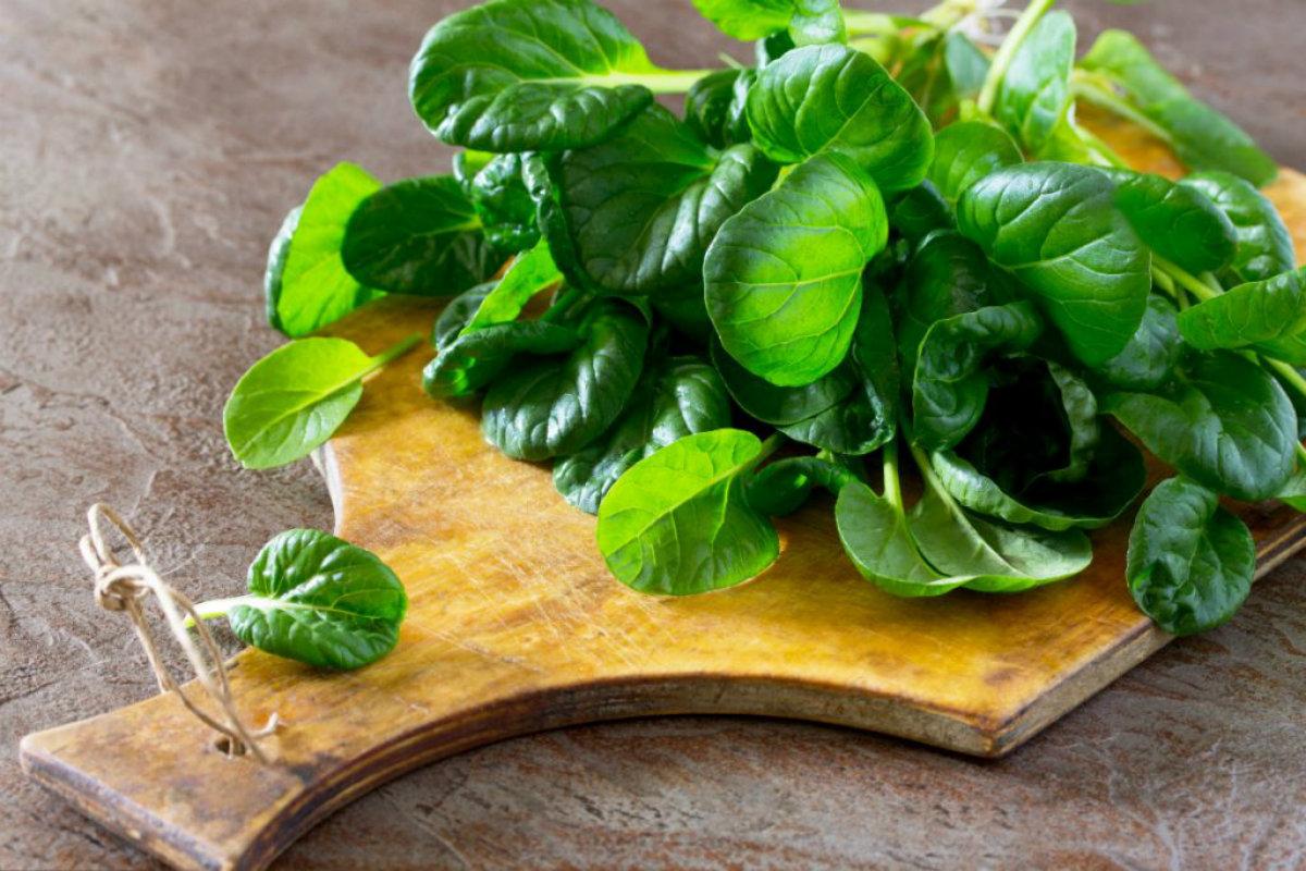 tipi di insalata, spinaci
