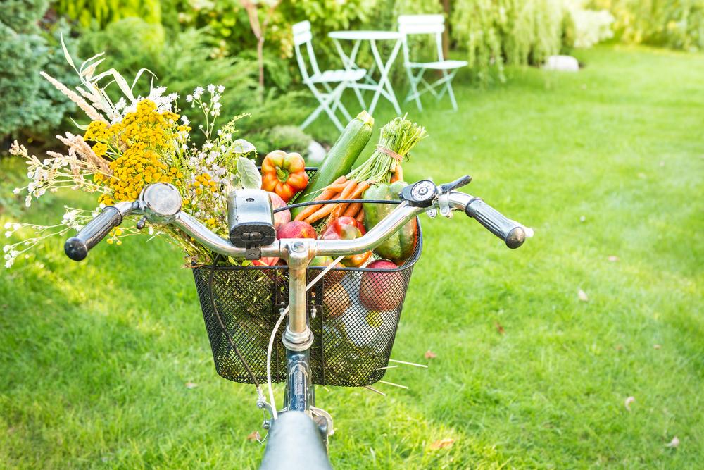 verdura di maggio da portare in tavola