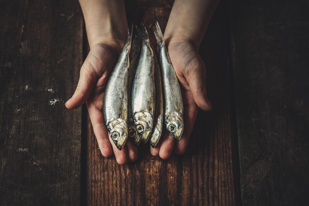 Aiuta la tua digestione con il pesce azzurro